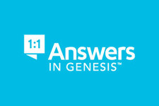 Answers in Genesis VBS Themes