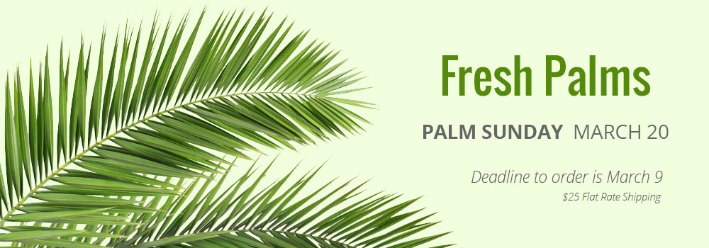 Fresh Palms Strips Branches