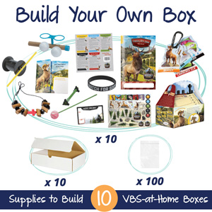 Build Your Own Rocky VBS Box