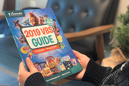 VBS 2019 Guide