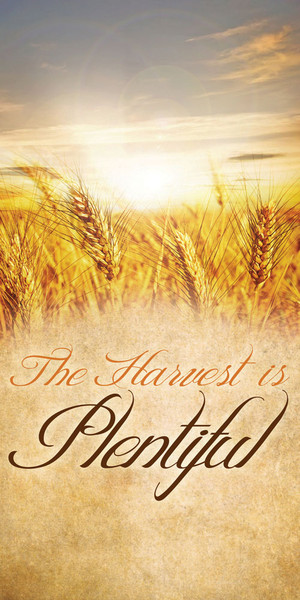 Church Banner Fall Amp Thanksgiving The Harvest Is Plentiful