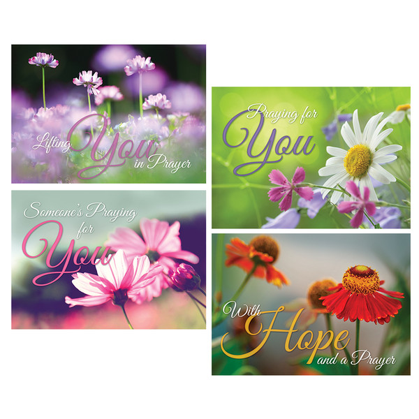 Bible version niv product type greeting cards season encouragement cards in my prayers box of 12 m4hsunfo