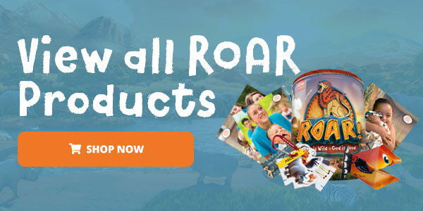 View All Roar Products